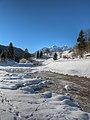 Near Andalo - Trento, Italia - 1 Gennaio 2011 - panoramio (1).jpg