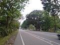 Near Kg.Baharu Section - panoramio.jpg