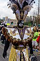 New Orleans Mardi Gras 2017 Zulu Parade on Basin Street by Miguel Discart 10.jpg