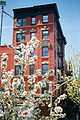 New York City, East village 2003.jpg