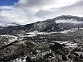 Nieve (158313103).jpeg
