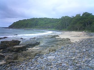 Noosa National Park - A beach on the headlands coastal trail