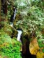 North Cascades National Park (9292788470).jpg