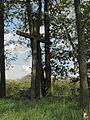 Nowa Wieś, Cmentarz Ewangelicko-Augsburski - fotopolska.eu (212664).jpg