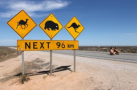 Eyre Highway west of the Nullarbor, South Australia Nullarbor warning signs, 2012.jpg