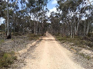 OKeefe Rail Trail A derelict railway line now open as a safe and enjoyable bicycle path