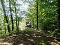 Oberharmersbach, Katzenstein 1.jpg