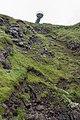 Observation Deck - The Gobbins - Islandmagee, Northern Ireland, UK - August 14, 2017.jpg