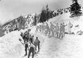 Offiziere kontrollieren die Schneeräumarbeiten im Tiefschnee - CH-BAR - 3239537.tif