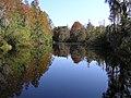 Okefenokee Swamp Canal - panoramio.jpg