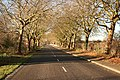 Old Grantham Road - geograph.org.uk - 1085030.jpg