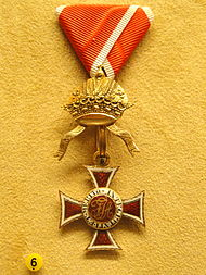 Order of Leopold, Austria, A. A. Thesleff, 1814 - National Museum of Finland - DSC03999.JPG