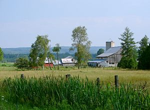 Oro-Medonte - Rural scene near Mount St. Louis