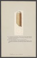 Orthoceras semistriata - - Print - Iconographia Zoologica - Special Collections University of Amsterdam - UBAINV0274 005 11 0004.tif