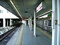 Osaka-subway-T36-Yaominami-station-platform.jpg