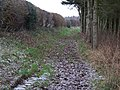 Oxfordshire Way - geograph.org.uk - 1637558.jpg