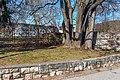 Pörtschach Hans-Pruscha-Weg 5 Parkhotel Steinmauer am Park 27022020 8379.jpg