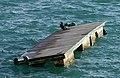 PICT6505a Kormoran Lac de Ste Croix (27071647118).jpg