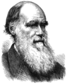 PSM V21 D154 Charles Darwin.png