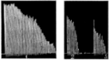 PSM V76 D194 Graph of a human finger flexor muscle contractions.png