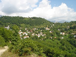 Papradište, Čaška - Panoramic view of the village