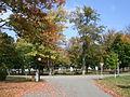 Park Circle Angelica NY.JPG