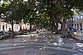 Paseo del Prado 3 (3217404297).jpg