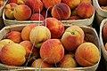 Peaches at a Farmers Market - 49806604067.jpg