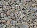 Pebbles - geograph.org.uk - 371235.jpg