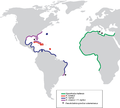 PeerJ 2233 - Pseudorhabdosynochus sulamericanus - fig-7.png