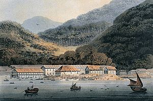 George Town, Penang - Panoramic view of George Town from the sea, drawn in 1811.