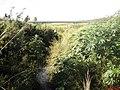 Pequeno córrego na Rodovia vicinal Paraíso-Monte Azul Paulista - panoramio.jpg