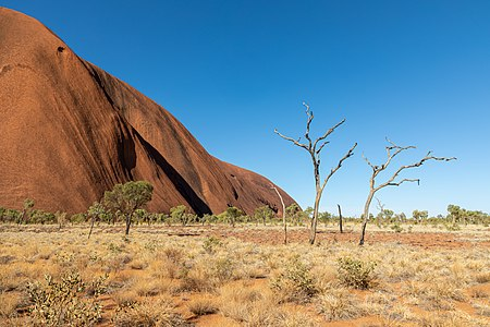 Kuniya Walk near Mutitjulu Waterhole at Uluru (Ayers Rock) in Uluṟu-Kata Tjuṯa National Park, Petermann Ranges, Northern Territory, Australia