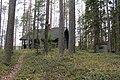 Petit chalet au bord du lac de Konnevesi. - panoramio.jpg