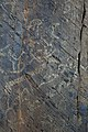 Petroglyphs in the Tura-Alty 07.jpg