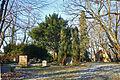 Petzow-Friedhof.jpg