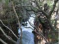 PikiWiki Israel 20442 The Banias hanging bridge.jpg