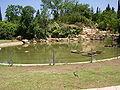 PikiWiki Israel 5120 pond in the roses garden in jerusalem.jpg