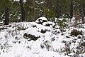 Pinar ^ Nieve - panoramio (12).jpg
