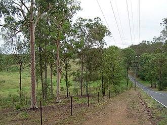 Pinjarra Hills, Queensland - University of Queensland paddocks