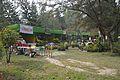 Plant Stall - Agri-Horticultural Society of India - Alipore - Kolkata 2013-01-05 2259.JPG