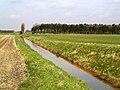 Ploughfurrow Drain and Long Plantation - geograph.org.uk - 365410.jpg