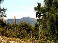 Pohľad na Zámčisko - panoramio.jpg