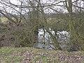 Pond alongside Green Lane - geograph.org.uk - 1753829.jpg