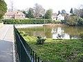 Pond on Pond Road - geograph.org.uk - 1213888.jpg