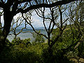 Port-cros-nature 1.jpg
