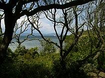 Port-cros-nature 1.jpg