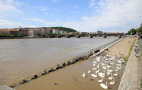 Vltava river in Prague during floods in 2013
