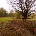 Quarry Moor (75).JPG