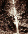 Queensland State Archives 3990 Emu Vale Waterfalls 404 ft 7 May 1894.png